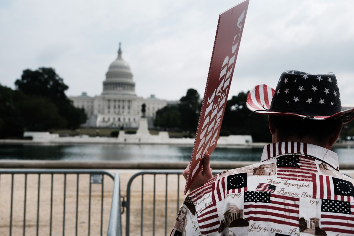 A man carrying a sign and wearing a shirt and hat with American flag print faces the US Capitol.
