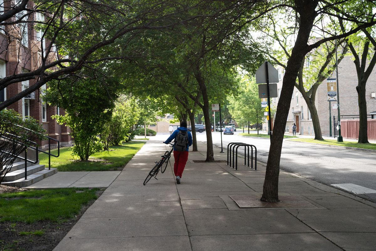 A young man walks his bike down a city sidewalk as light shines through the trees that line the street.