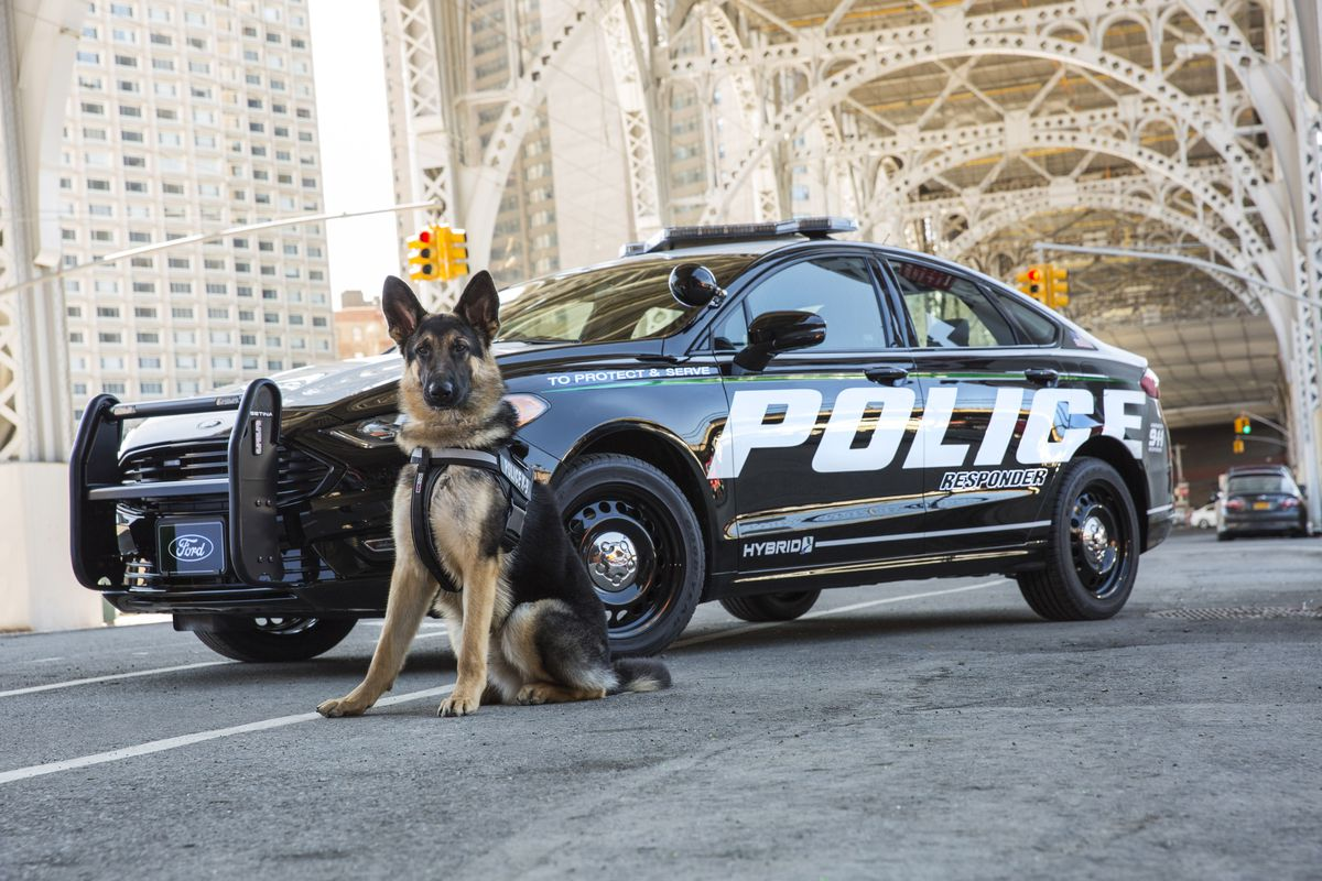 Ford Built A Hybrid Police Car Designed To Handle