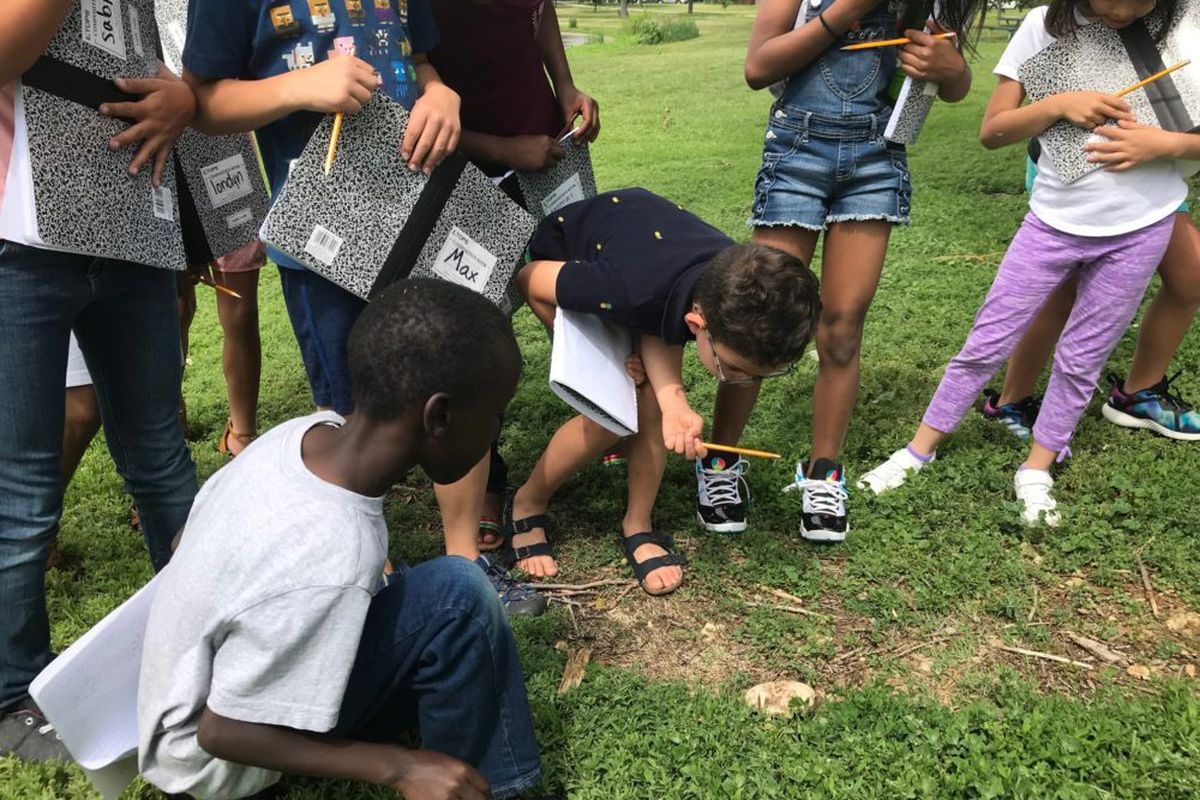 "Rising third-graders attending Denver Public Schools' ""summer academy"" stop to inspect a mushroom during a nature walk."
