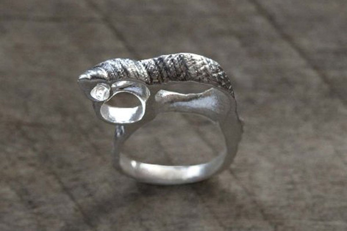"""Species by the Thousands shell ring via <a href=""""http://supermarkethq.com/product/skeleton-shell-ring-pendant"""">Supermarket</a>"""