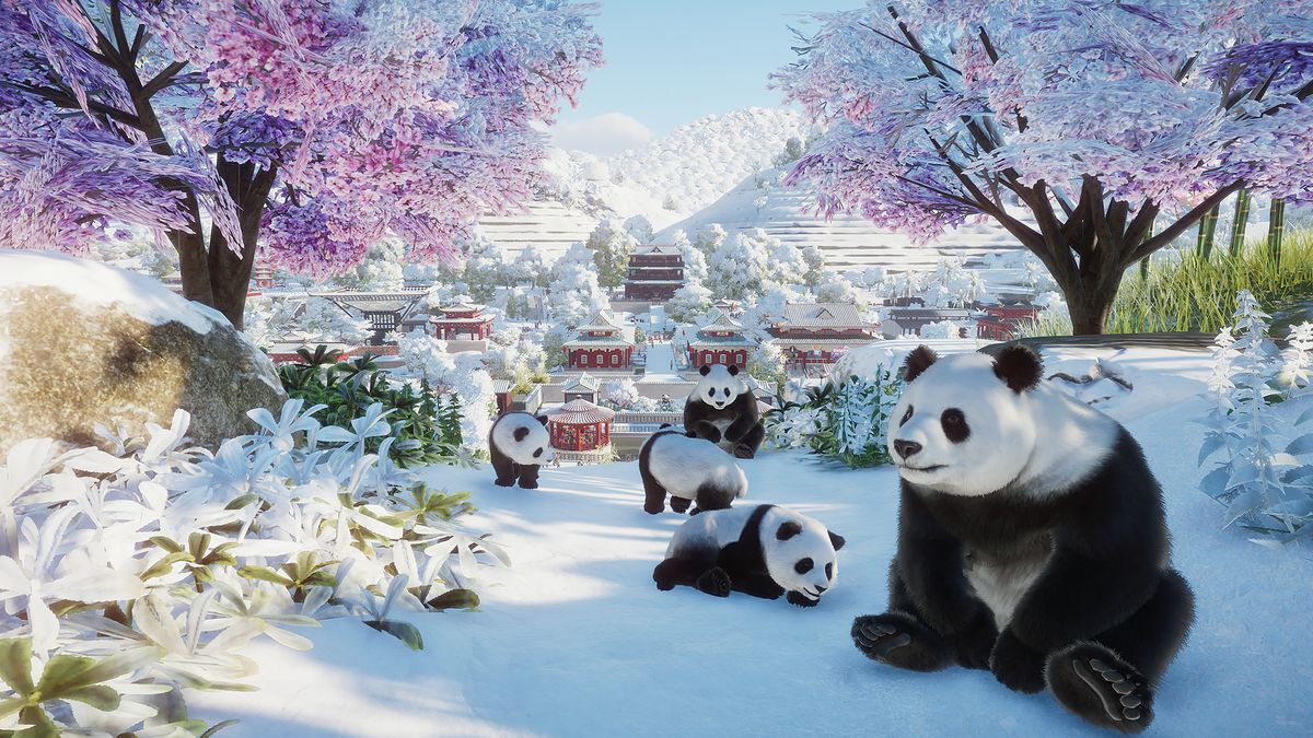 pandas in the snow in Planet Zoo