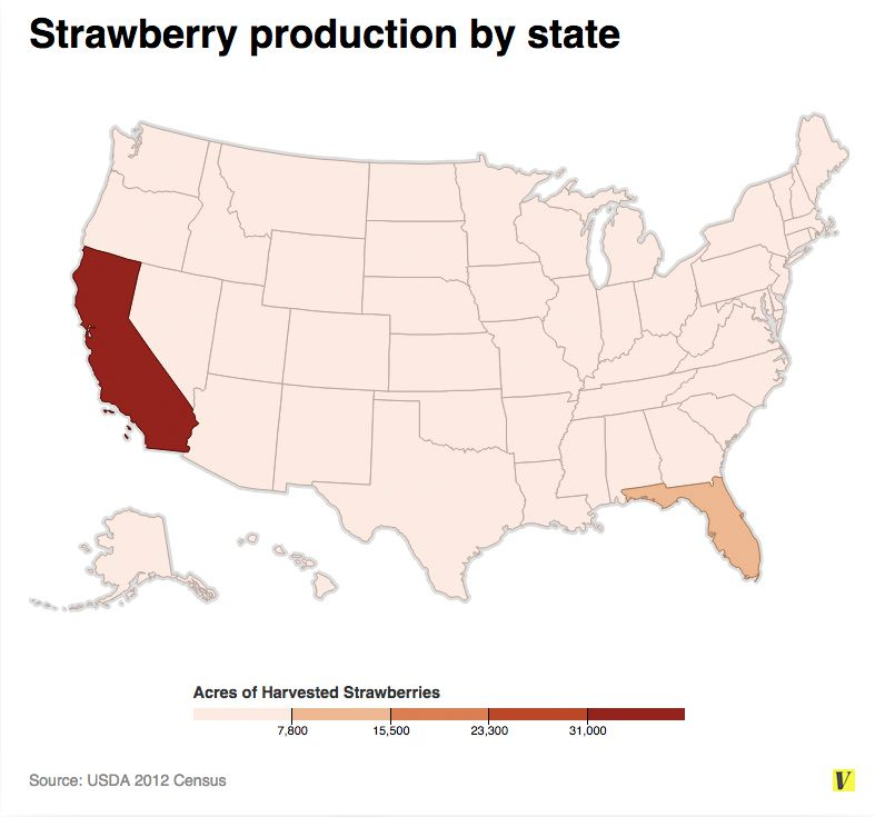 Strawberries by state