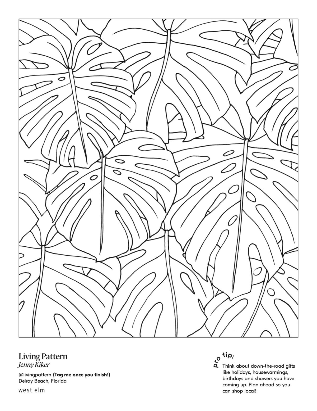 Line drawing of a bunch of plant leaves.
