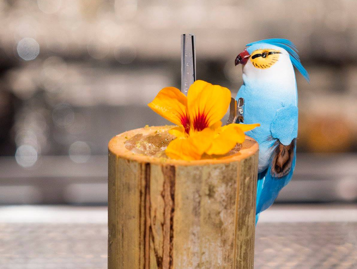 A wooden-looking highball glass with a bright fake bird perched on the rim near a flower garnish and straw sticking out of a drink of crushed ice