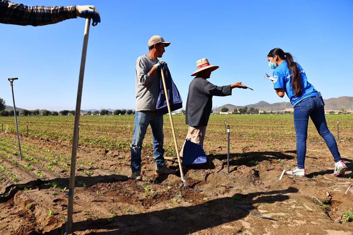 Aid Group Spreads Word On COVID-19 Vaccines To Farm Workers In California