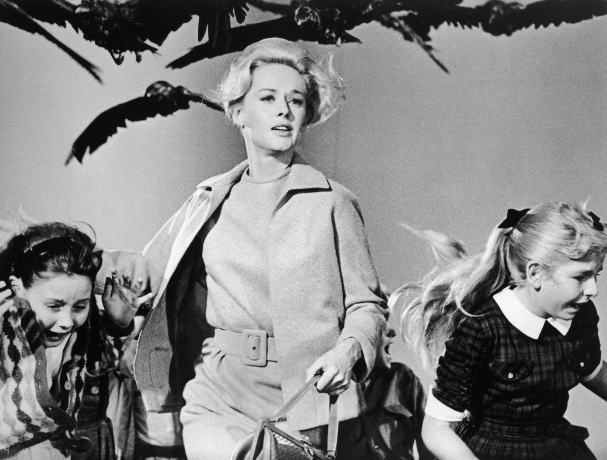 Tippi Hedren in The Birds. She later wrote that director Alfred Hitchcock sexually assaulted her.