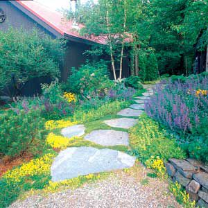 <p>BROAD STEPPING STONES laced with low-growing plants create an informal path that complements this rustic Vermont home and its free-form garden beds.</p>