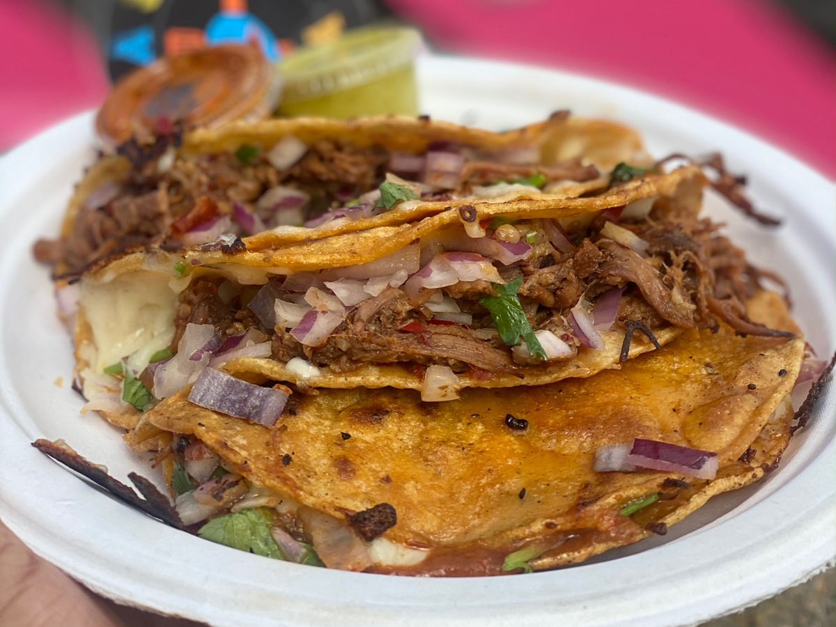 A paper plate with two quesabirria tacos