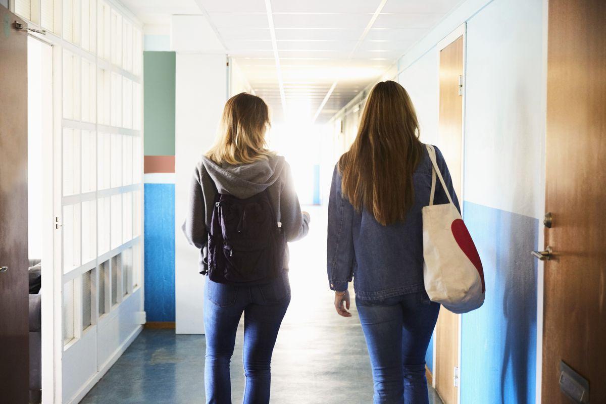 "68ee7b49c3 High school ""bracott"": my high school abolished its sexist dress ..."