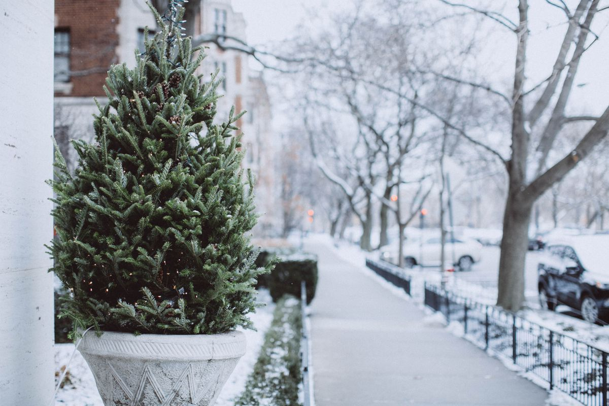 An evergreen tree on the front entrance of a home during winter.