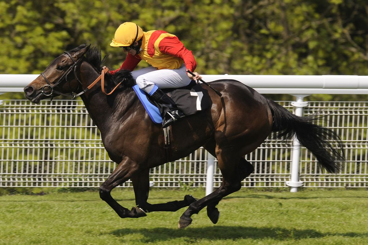 CHICHESTER, ENGLAND - MAY 19: Snow Fairy and Eddie Ahern win The Blue Square Height Of Fashion Stakes from Pipette at Goodwood racecourse on May 19, 2010 in Chichester, England (Photo by Alan Crowhurst/ Getty Images)