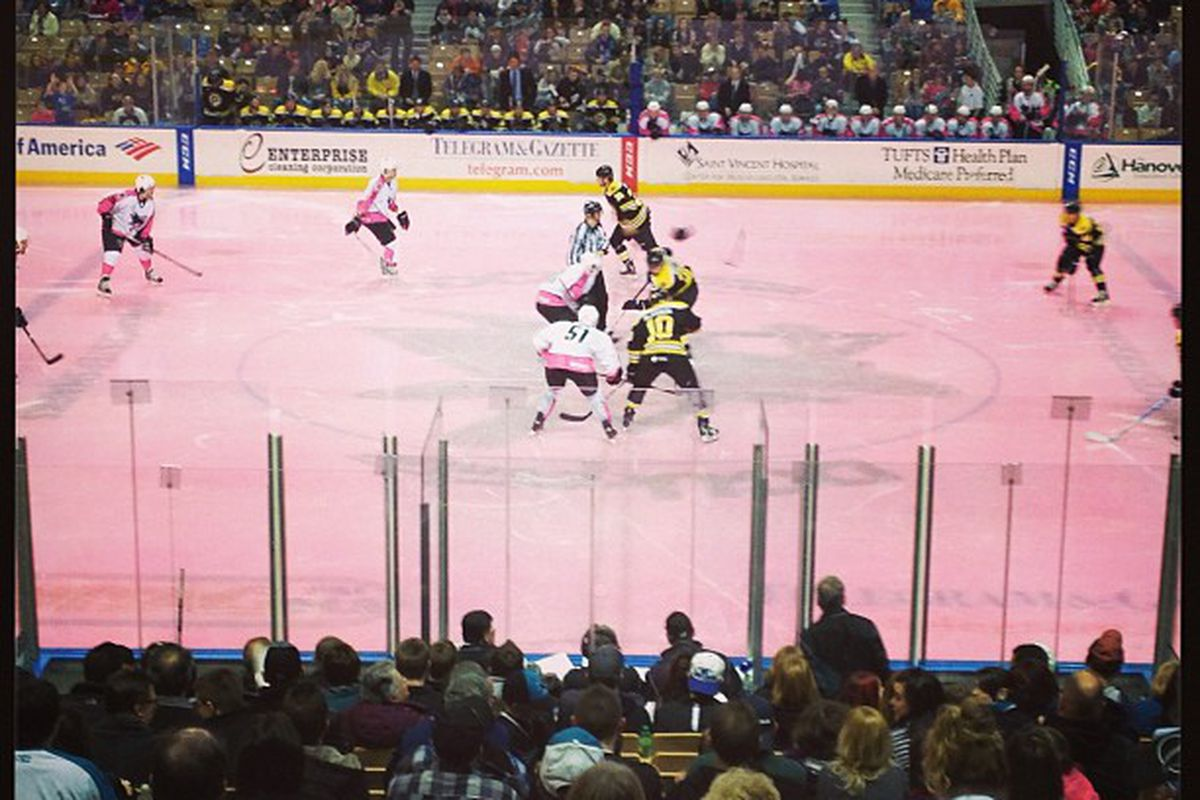 """""""Pink in the Rink"""" night at the DCU Center Saturday night."""