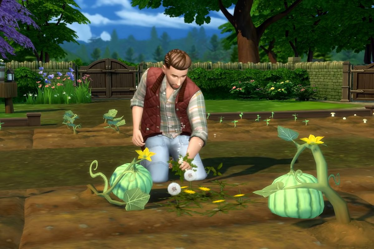 A sim tends to pumpkin plants in The Sims 4: Cottage Living