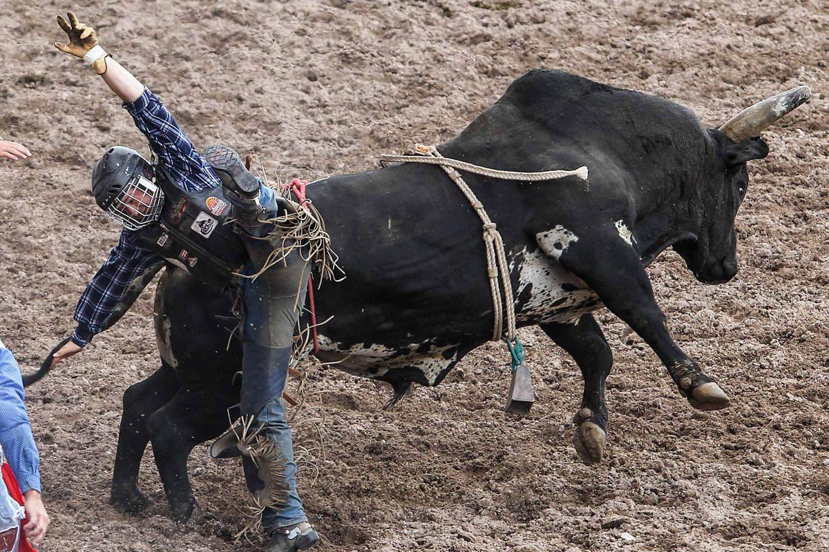 <em>Cowboys Ride For A Fee.  </em>