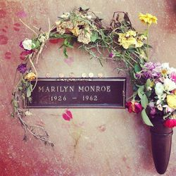 Marilyn Monroe's grave at Westwood Village Memorial Park. A fresh red rose is delivered here every single day.