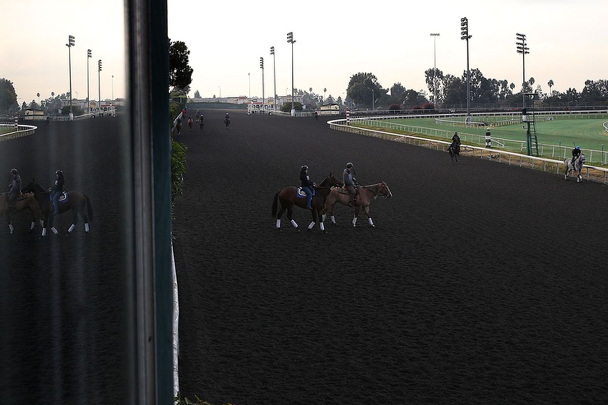 INGLEWOOD, CA - DECEMBER 21: Horses run along the backstretch during morning workouts at Betfair Hollywood Park on December 21, 2013 in Inglewood, California.