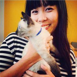 "Do you think Eventbrite staffers scheduled kitten playtime at their office…on Eventbrite? Image via <a href=""http://instagram.com/p/uwnQE0kpDx/"">Instagram</a>."