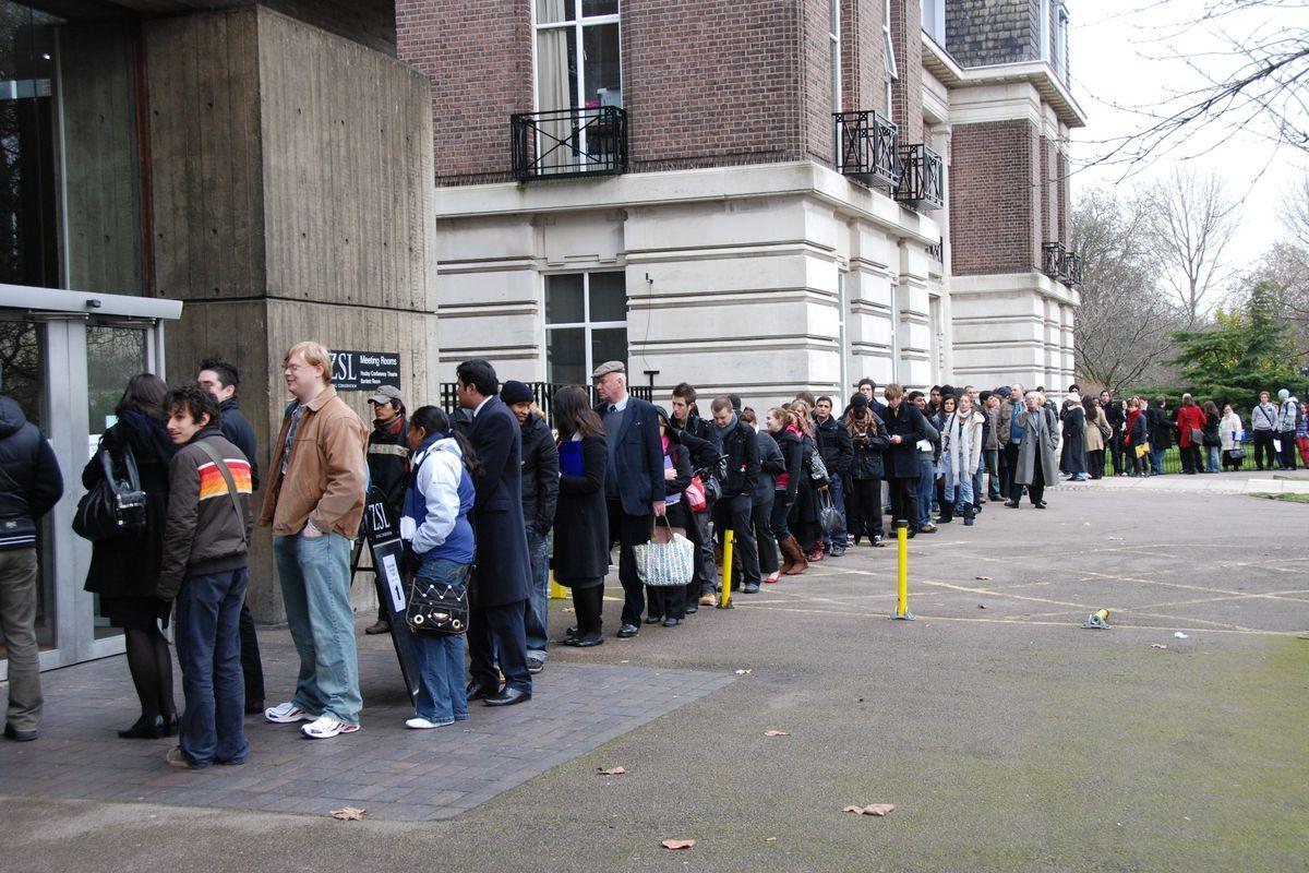 Jobseekers Queue Outside London Zoo