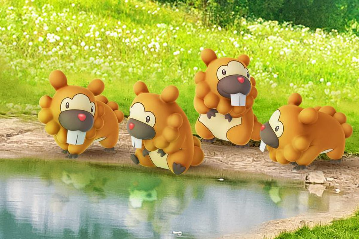 A group of four Bidoof hang out by the water