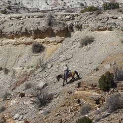 Mike Vanderhoof scouts a steep area on an obscure trail while riding horses in the Sid's Mountain Wilderness Study Area of the San Rafael Swell  Friday, April 1, 2011, in the San Rafael Swell in Central Utah.