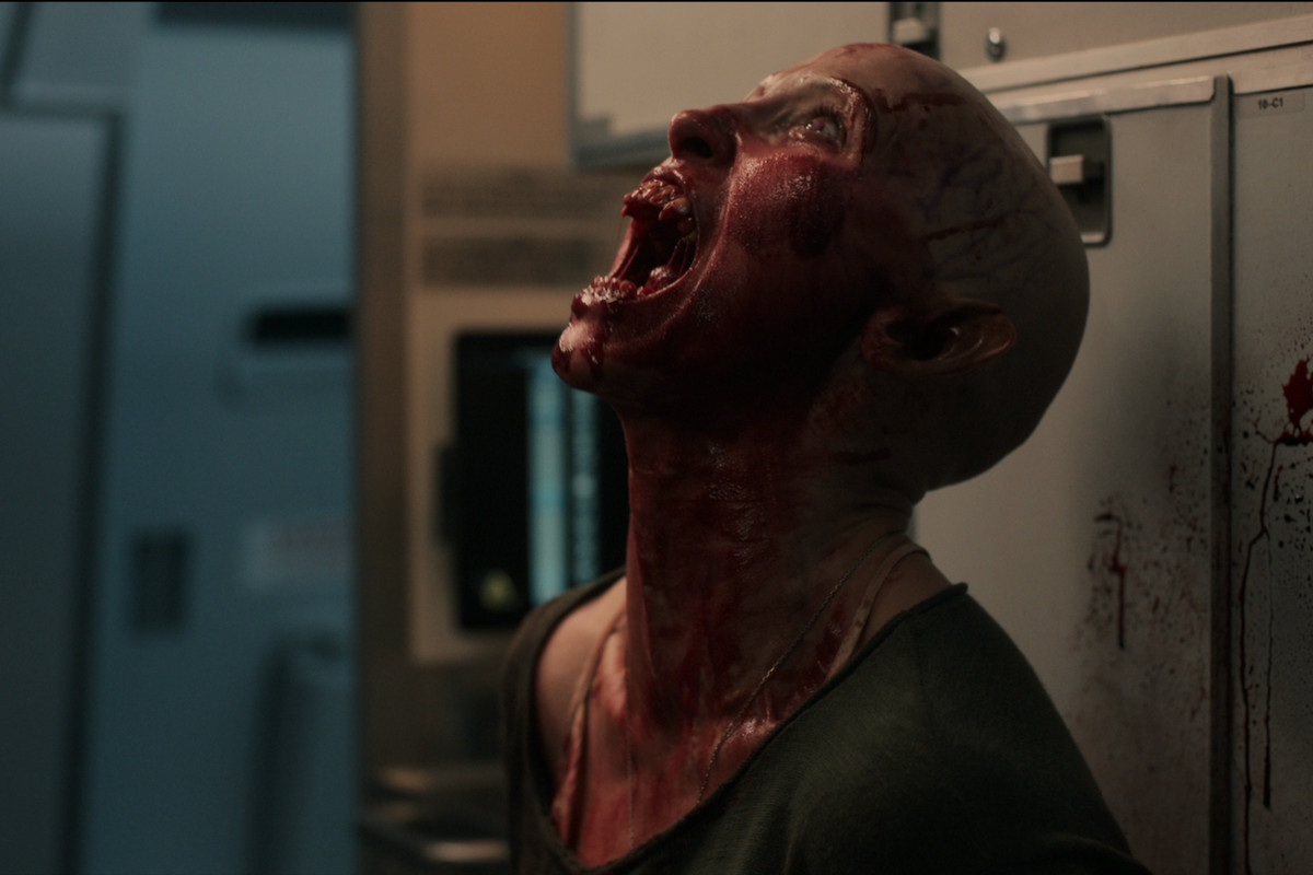 A blood-covered vampire roars aboard a plane
