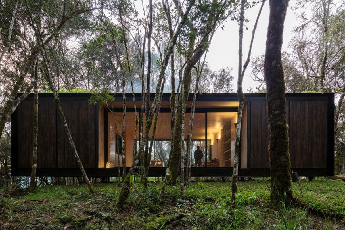 Prefab Home Blends Into Brazilian Forest With Dark