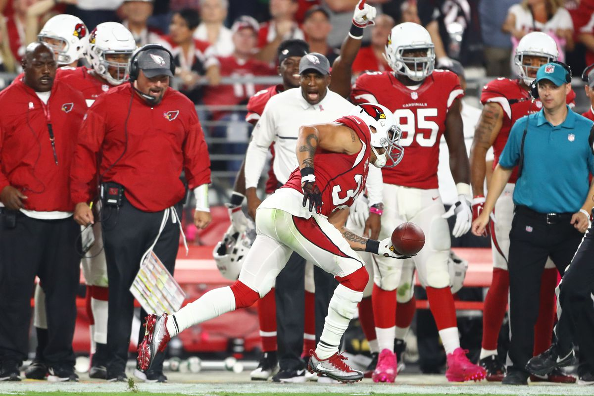 e40c1a557 Patience Is The Key With Tyrann Mathieu - Revenge of the Birds