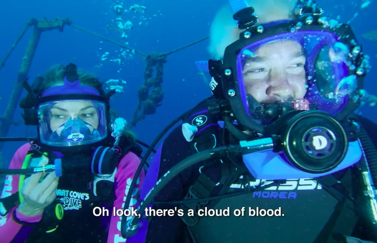 Guy Fieri's Shark Week Adventure Is One of His Greatest TV