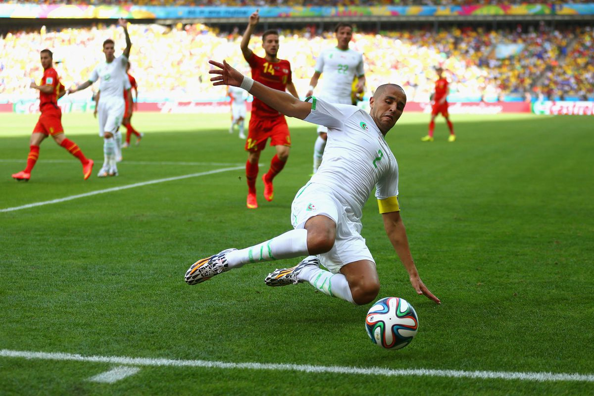 """Algeria captain Madjid Bougherra would be an absolute transfer coup for the Fire - which means, translated, """"is extremely unlikely to happen."""""""