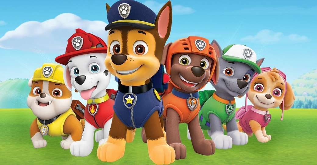a line up of dogs in clothes, including one dog in pink, from paw patrol