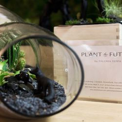 BASE has an entire collection of robots and plants as well as a garden wall from Plant the Future, a cool, local plant shop in Wynwood. White is their signature color, however they made exclusive black figurines for BASE. Check out the new nine foot robot