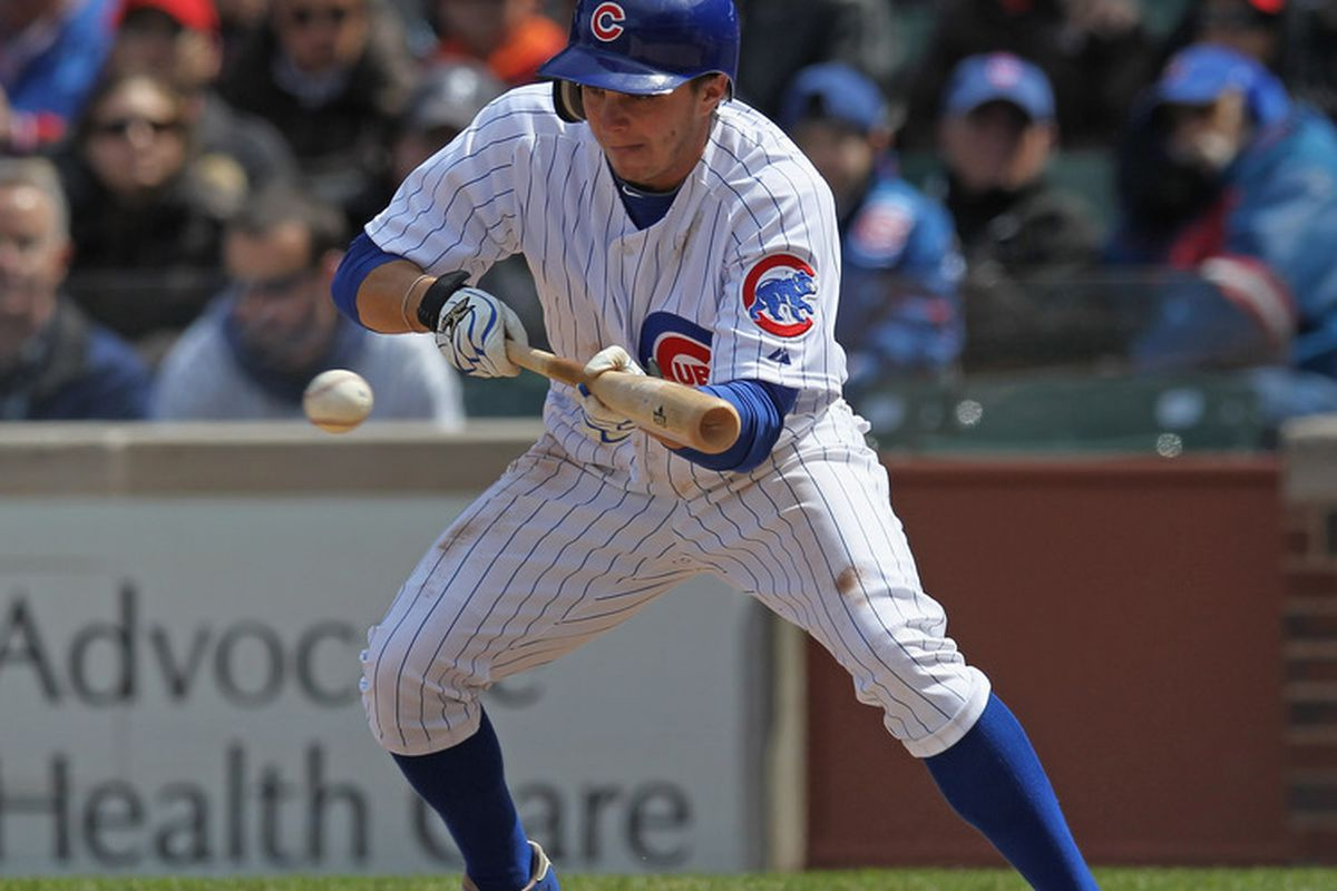 CHICAGO, IL - APRIL 22: Tony Campana #1 of the Chicago Cubs bunts against the Cincinnati Reds at Wrigley Field on April 22, 2012 in Chicago, Illinois. (Photo by Jonathan Daniel/Getty Images)