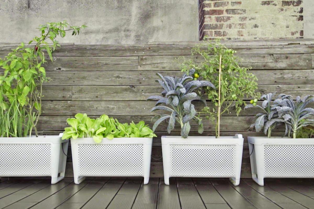 smart outdoor planters