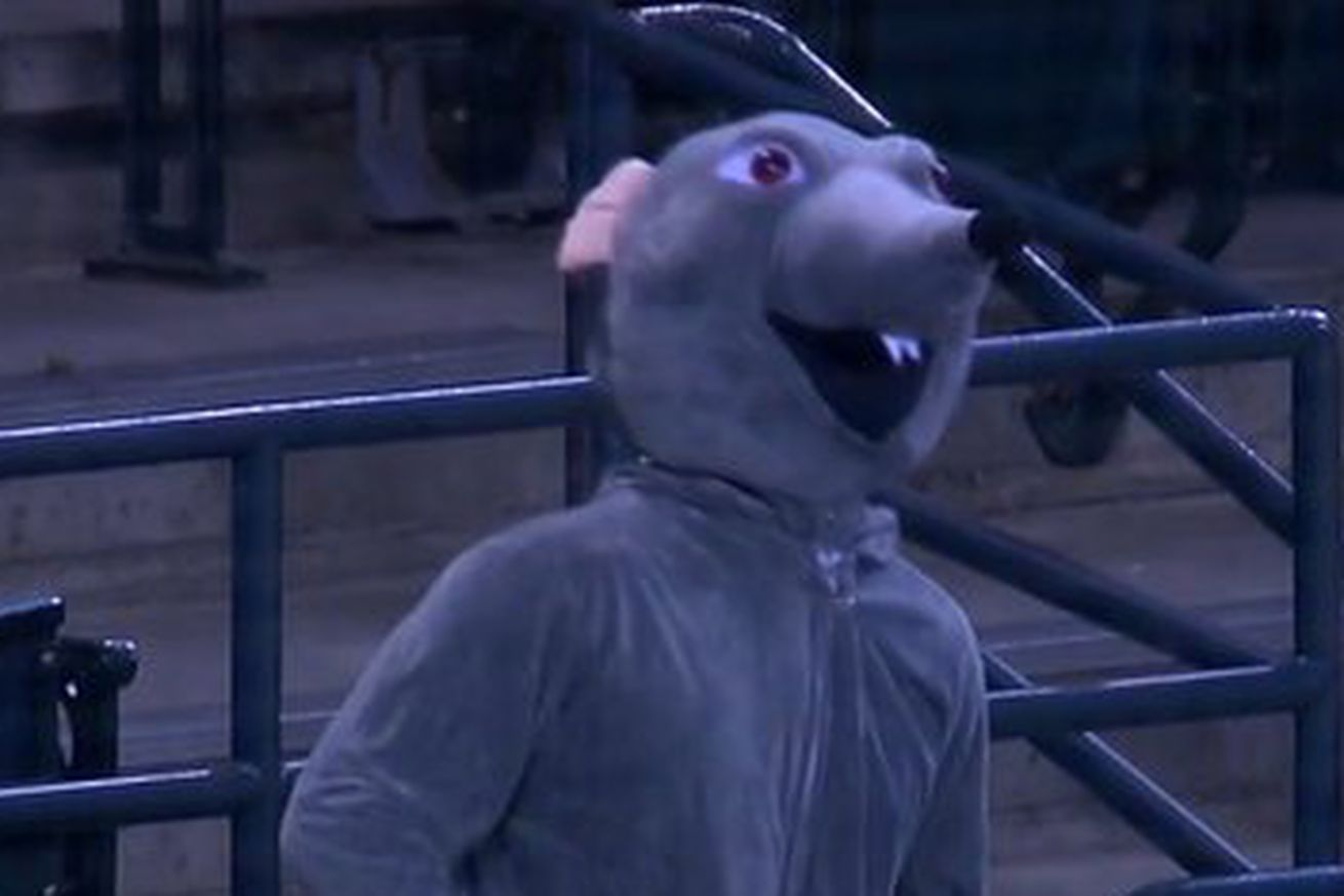Meet Rat Leon, the newest mascot for the Diamondbacks. Its funny, because its a pun based off misreading #Rattleon. It's terrifying because it looks like a cheap costume from Party City come to life