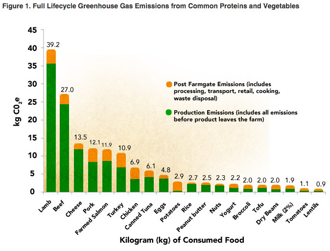 Study: Going vegetarian can cut your food carbon footprint in half - Vox