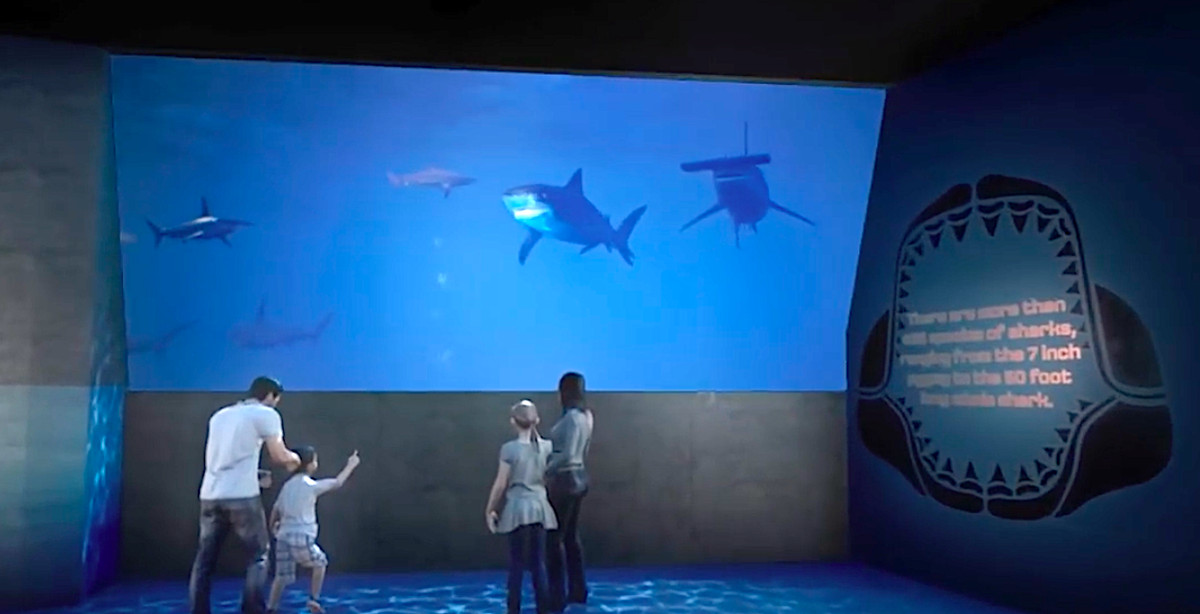 A new shark exhibit shown with a large windows and  children.