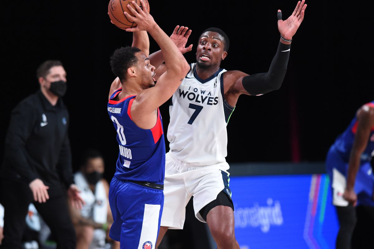Image result for nets iowa wolves