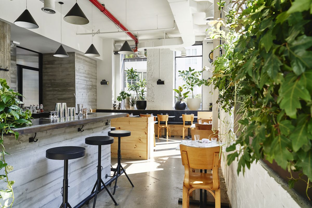 An interior shot of the restaurant with vines in the front, a bar with a few seats, and wooden chairs in the distance.