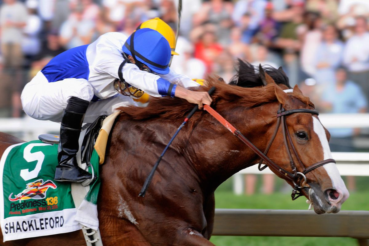 BALTIMORE, MD - MAY 21:  Jockey Jesus Castanon guides Shackleford  to win the 136th running of the Preakness Stakes at Pimlico Race Course on May 21, 2011 in Baltimore, Maryland.  (Photo by Rob Carr/Getty Images)