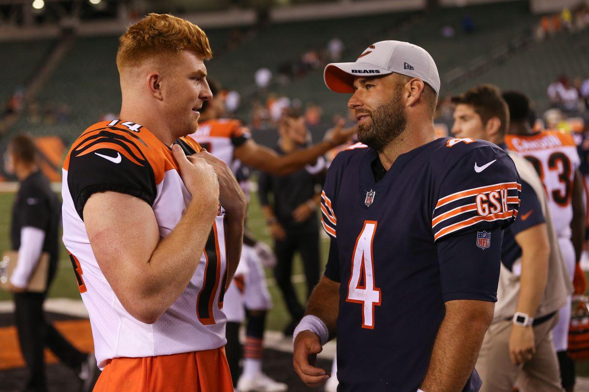 NFL: AUG 09 Preseason - Bears at Bengals