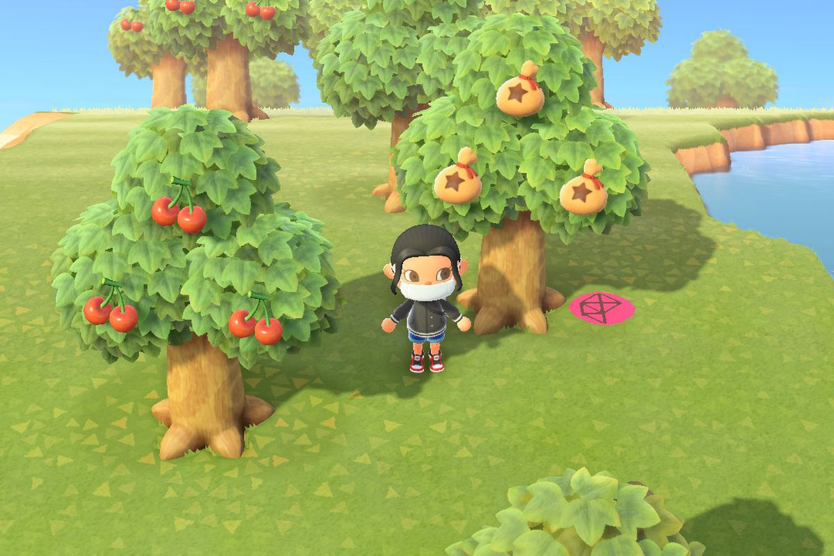 Standing in front of a money tree in Animal Crossing New Horizons