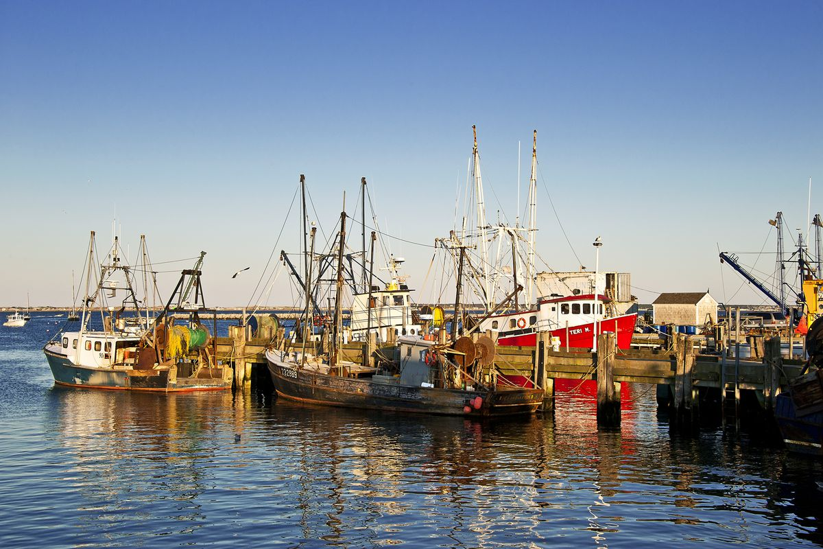 CAPE COD, PROVINCETOWN, MASSACHUSETTS, UNITED STATES Commercial fishing boats docked at McMillan Wharf.