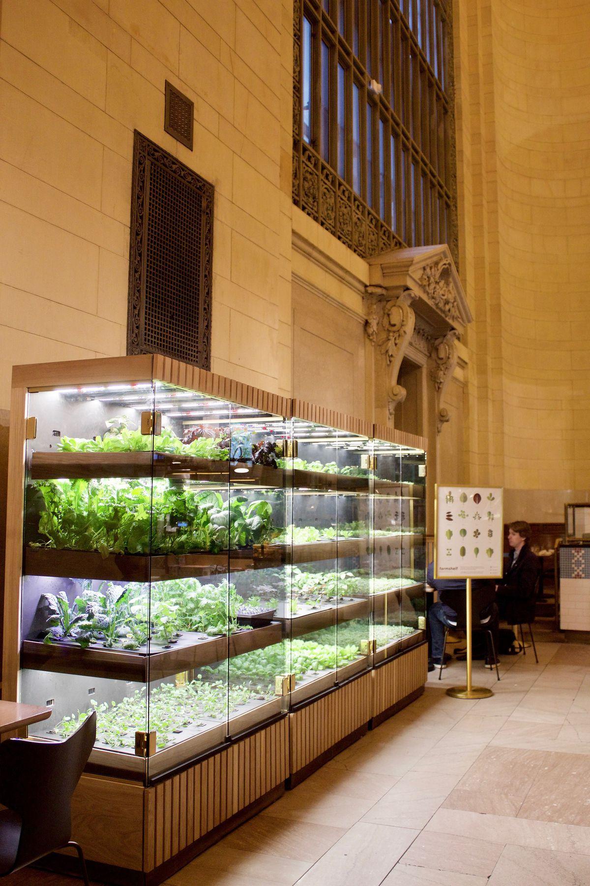 Farmshelf in Grand Central