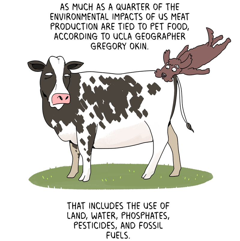 As much as a quarter of the environmental impacts of US meat production are tied to pet food, according to UCLA geographer Gregory Okin. That includes the use of land, water, phosphates, pesticides, and fossil fuels.