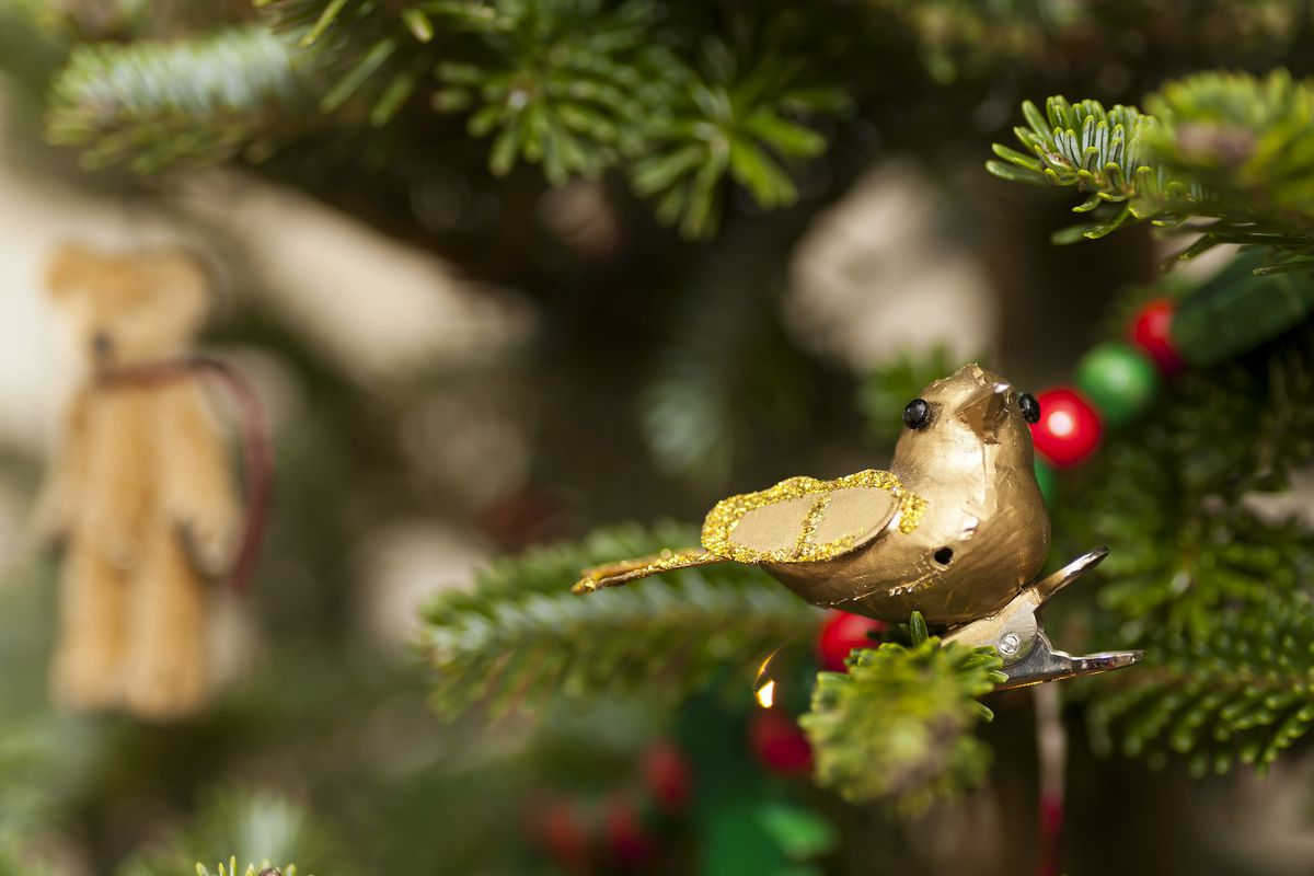 Closeup of bird ornament perched on a frond of a Christmas tree with a bear in the background.