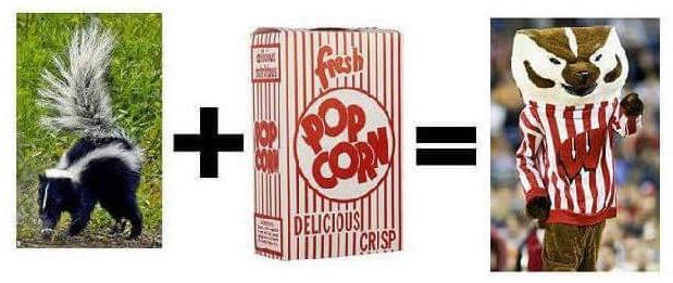 bucky popcorn skunk