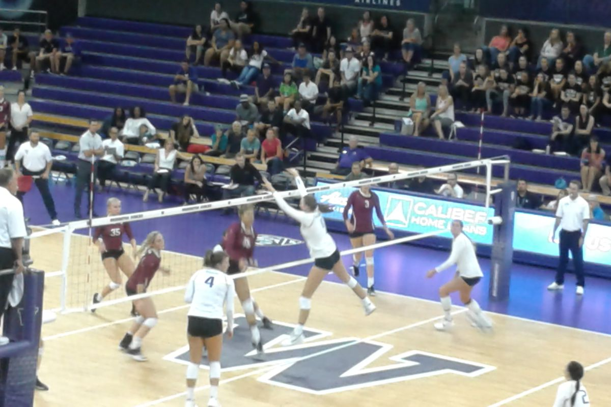 Husky Volleyball Awarded 8 National Seed Instant Reaction Uw Dawg Pound