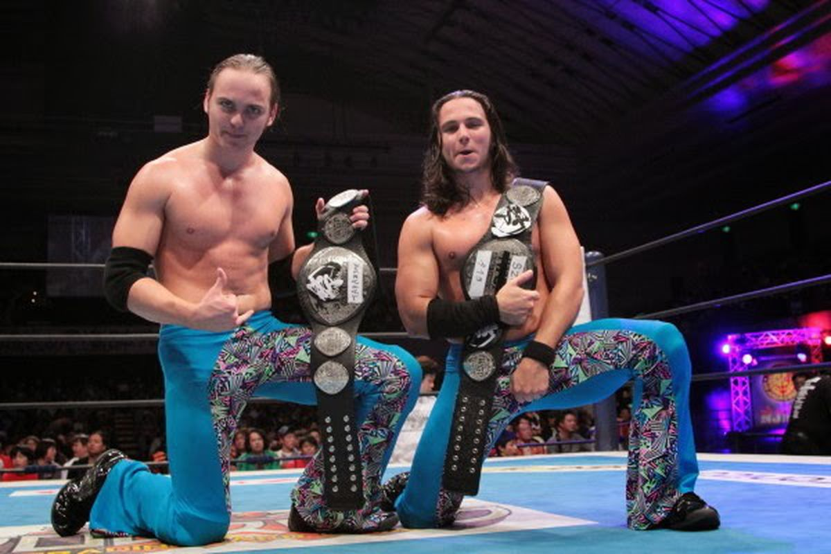 Image result for the young bucks