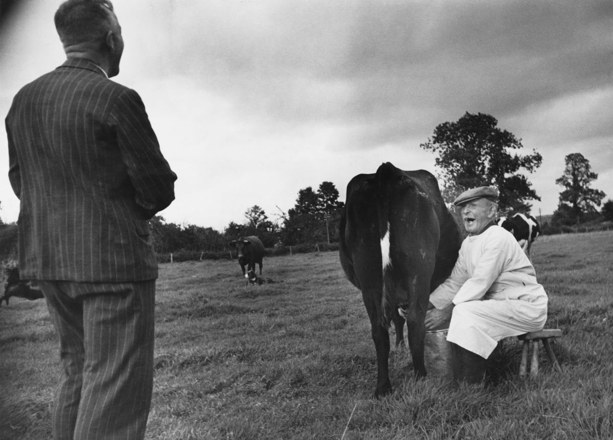 A man in a black pinstriped suit stands in the middle of a grassy field, facing another man who is seated on a stool. The man on the stool is wearing all white and is milking a cow.